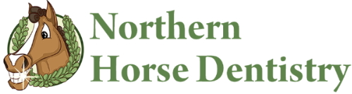 Northern Horse Dentistry